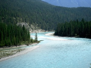 Kootenay River, BC - From Settler's Road